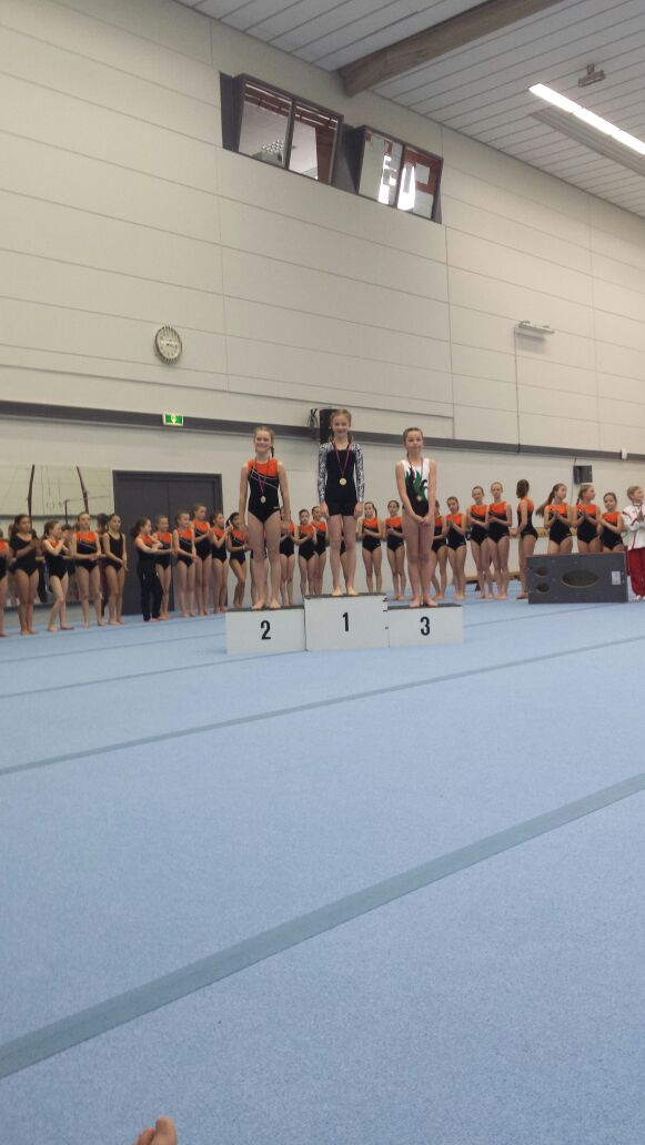 Turnwedstrijd georganiseerd door gymnastiekverenigingen Brummen en Eerbeek